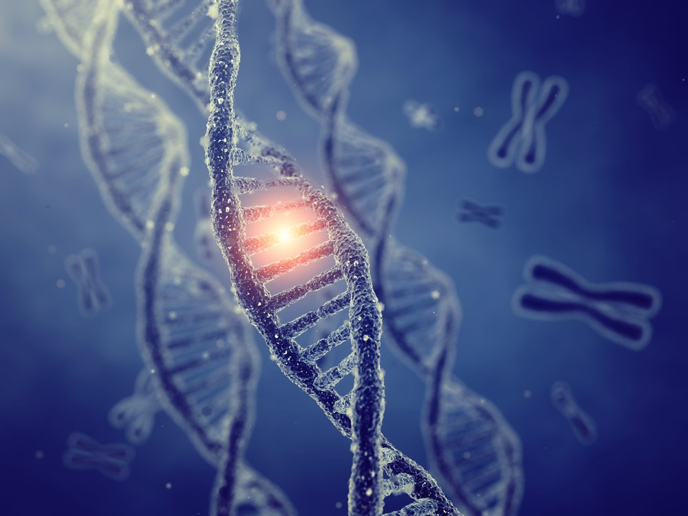 mutations and proteins