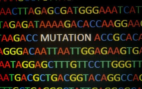 Copy Number Variations Helpful in Spotting Potential CMT Mutations