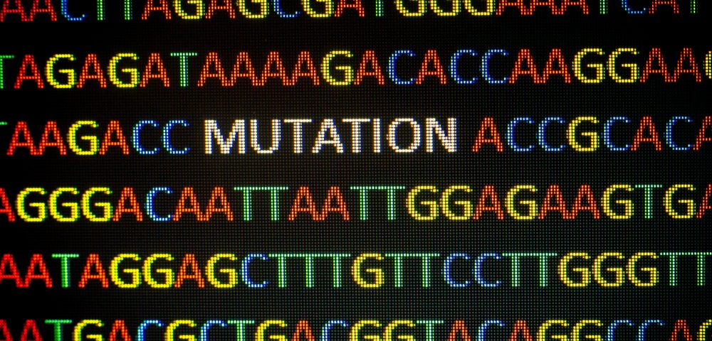 Researchers Report CMT2-causing Mutation in the EGR2 Gene