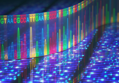Newly Identified Gene Mutation Linked to Rare CMT Type in Indian Case Report