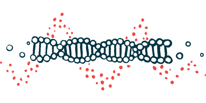 protein production | Charcot-Marie-Tooth News | GARS gene mutations | Illustration of DNA