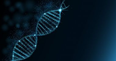 Gene therapy | Charcot-Marie-Tooth News | CMT1A | cellular structure image